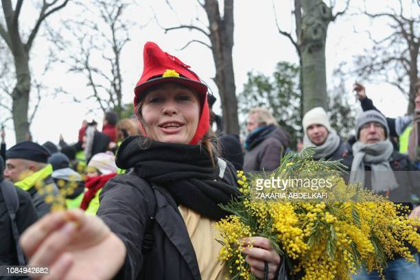 A protester offers mimosa flowers during an antigovernment demonstration called by the yellow vest movement in Paris on January 19 2019 'Yellow vest'...