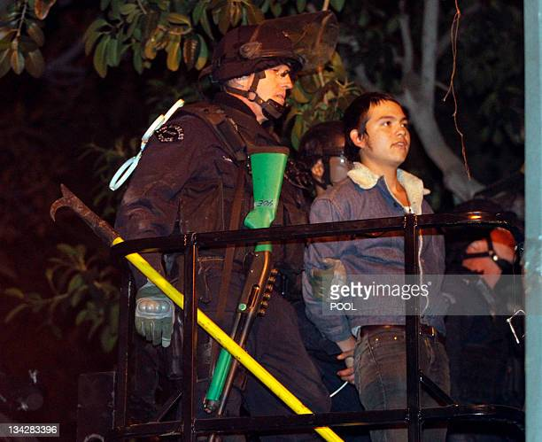A protester who camped out in a tree is arrested as Los Angeles police officers dismantle the Occupy LA encampment outside City Hall in Los Angeles...