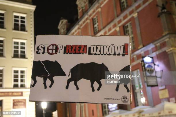 Protester with banner that speaks quotstop the slaughter of wild boarsquot is seen in Gdansk Poland on 10 January 2019 People protest against Law and...