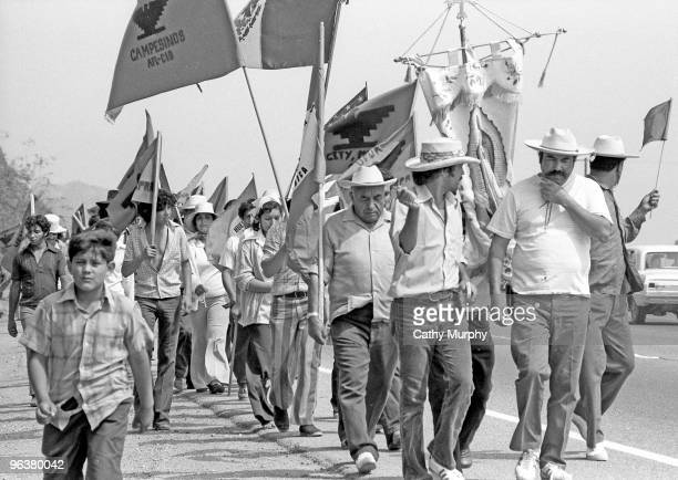 Protesters and supporters march during the United Farm Workers' 1000 Mile March in California summer 1975 The march was a 59 day trek organized by...