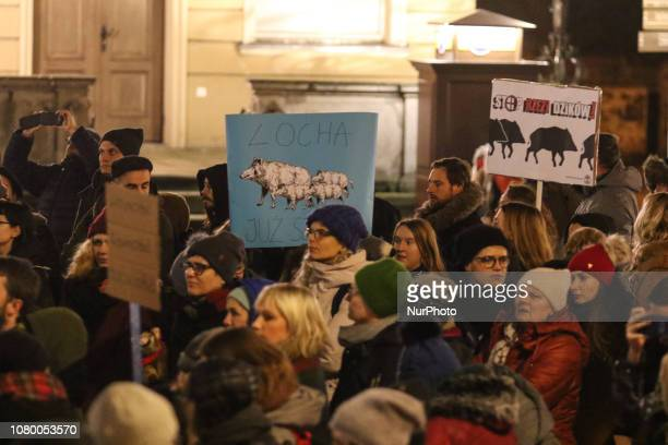 Protesters are seen in Gdansk Poland on 10 January 2019 People protest against Law and Justice government plas to exterminate Wild Boars population...