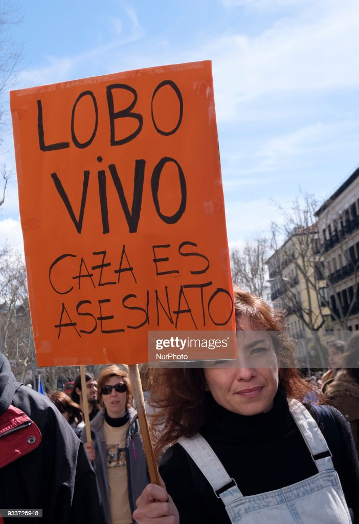 Demonstration in defense of wolf conservation in Madrid