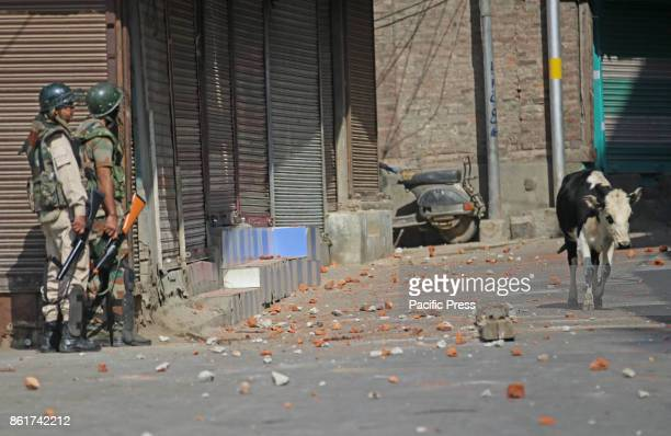 Protesters clash with forces in Habba Kadal Srinagar soon after mysterious braid chopping incident in the area more then 100 braid chopping incidents...