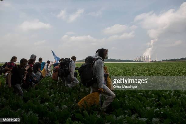 Protesters cross a field in the Rhineland mines region west of Cologne to block rail road trains transporting coal to power plants on August 26 2017...
