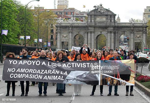 Protesters hold a banner reading 'I support the activists They won't gag simpathy for animals' as they march past 'Puerta de Alcala' during...