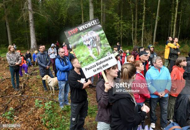 Protesters hold a banner reading Stop logging forest is my home against the cutting of trees in the Bialowieza Forest in Stara Bialowieza Poland on...