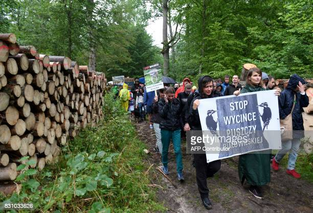 "Protesters hold a sign reading ""stop logging Bialowieza forest"" while taking part in a protest against the cutting of trees in the Bialowieza Forest..."