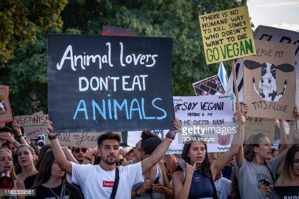 Protesters hold placards in defence of the animal rights during the demonstration Convened by the Barcelona Animal Save organisation hundreds of...
