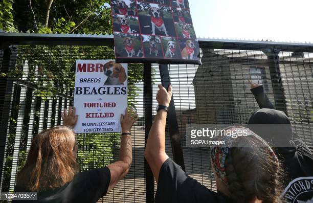 Protesters hold up signs and placards at the main gate of MBR during the protest. Residents of Camp Beagle and their supporters gathered outside...