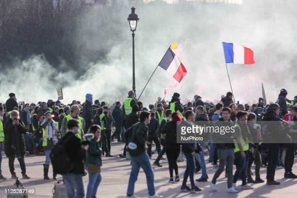 Protesters standing amid tear gas smoke during a Yellow vest antigovernment demonstration on February 16 2019 in Paris on Esplanade des Invalides...