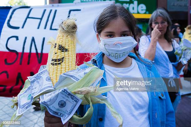 Protesters took to the streets in downtown Santiago as part of a series of worldwide protests against the free trade agreement between Monsanto Co...