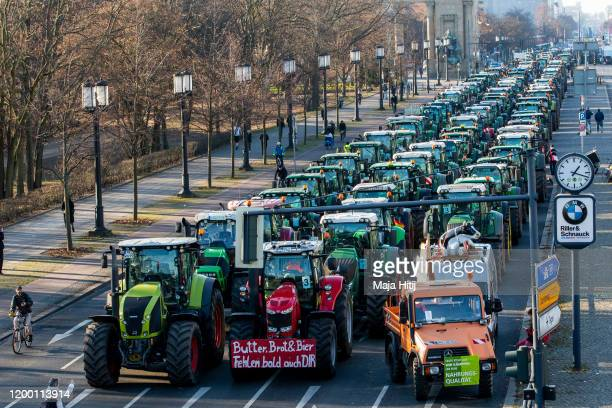 Protesting farmers tractors are parked in the city center on January 17 2020 in Berlin Germany The farmers whose demonstration today is coinciding...