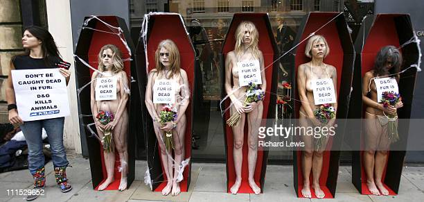 Protestors during Peta Demonstration Outside Dolce Gabbana In London in London United Kingdom