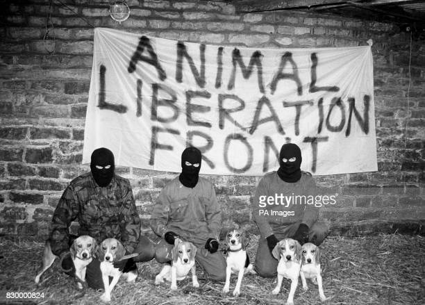 Protestors from the Animal Liberation Front following a raid on a laboratory owned by Boots the Chemist in London * Hardline American animal rights...