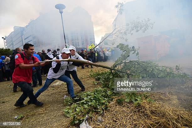 Protestors put broken trees in the middle of the street during a farmers demonstration in front of the European Commission building on September 7 in...