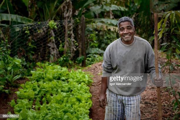 agricultor brasileiro orgulhoso - pequeno - fotografias e filmes do acervo