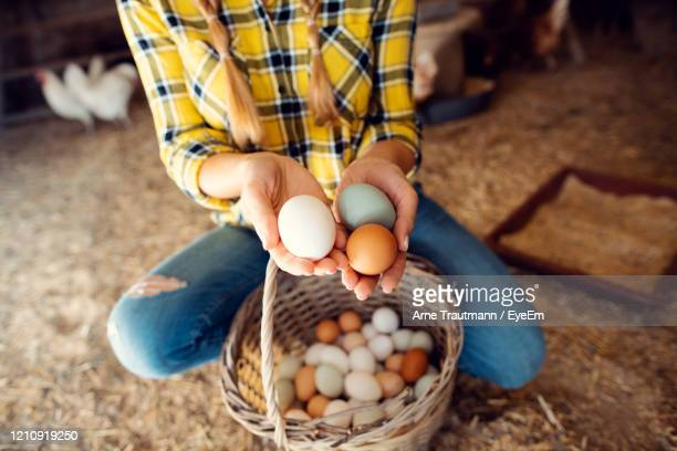 proud chicken farmer woman showing the organic eggs her hens produced - eyeem collection stock pictures, royalty-free photos & images