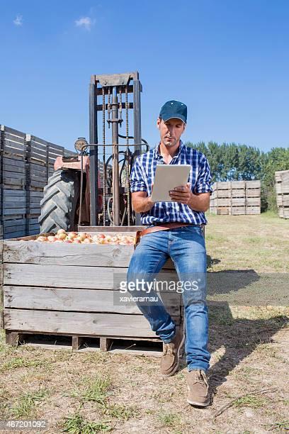 Stolz der apples