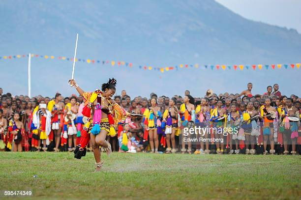 proud performance - reed dance stock pictures, royalty-free photos & images