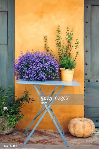 decoração provencal: flores e tome em uma tabela de encontro à parede amarela. - provence alpes côte d'azur - fotografias e filmes do acervo