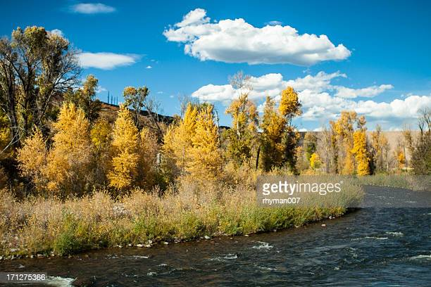 provo river in autumn - provo stock pictures, royalty-free photos & images