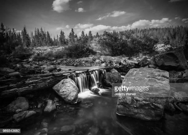 Provo River - TRI-X 320 Film