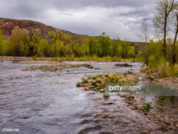 provo river - utah 0005 - provo foto e immagini stock