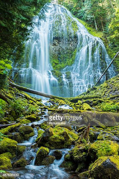 Cascate Proxy, a Willamette National Forest, Oregon centrale (verticale
