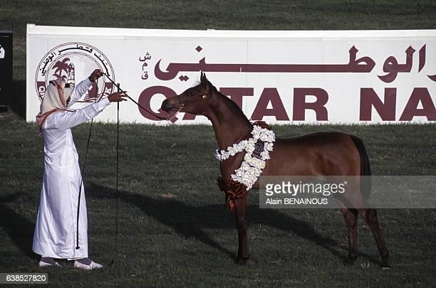 Présentation d'un pur sang à Doha, Qatar, lors du Marathon