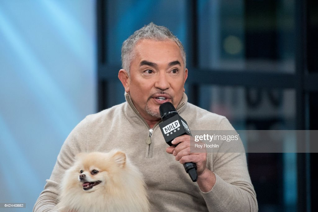 """Build Series Presents Cesar Millan and Andrew Millan Discussing """"Dog Nation"""" : ニュース写真"""