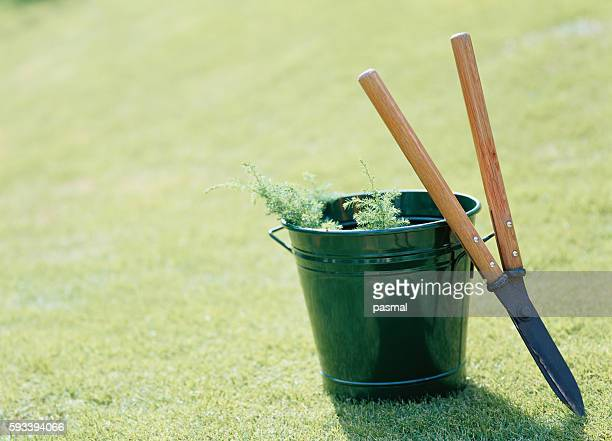 Pruning shears and bucket on lawn