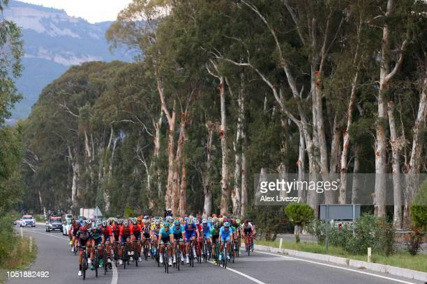 Przemyslaw Niemiec of Poland and UAE Team Emirates / Jay Mccarthy of Australia and Team Bora-Hansgrohe / Heinrich Haussler of Australia and Team...