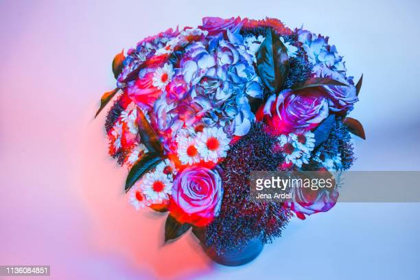psychedelic flowers, trippy flowers, floral arrangement, colorful bouquet, flowers with light trails - jena rose stockfoto's en -beelden