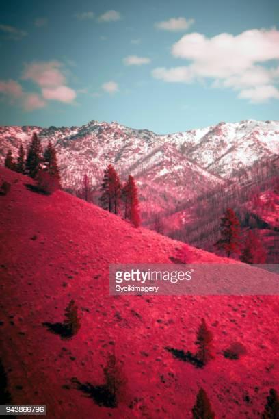 Psychedelic mountain range