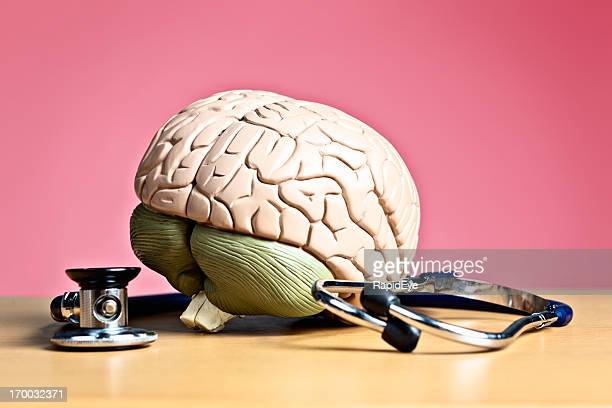 psychiatry or neurology? model brain with stethoscope - stroke stock pictures, royalty-free photos & images
