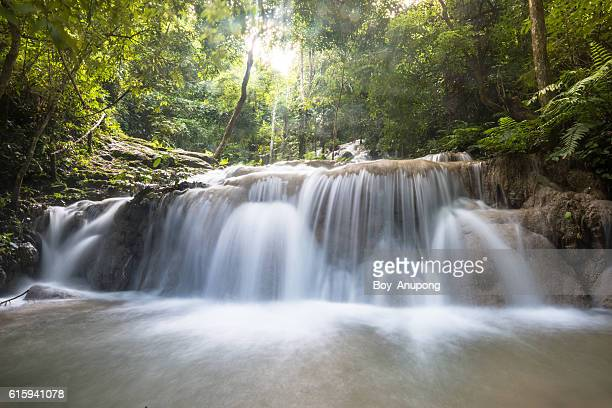 Pu Kaeng waterfall in Chiangrai province of Thailand.