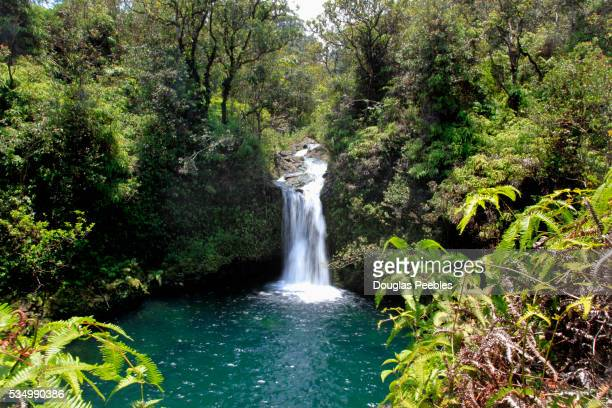 pua'a ka'a state park, hana coast, maui, hawaii - hannah brooks stock pictures, royalty-free photos & images