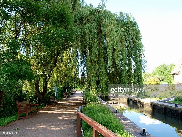 Public benches along the towpath at Iffley Lock River Thames Oxford UK
