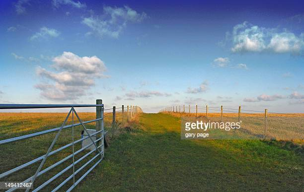 public footpath across farmers fields - bedfordshire stock photos and pictures