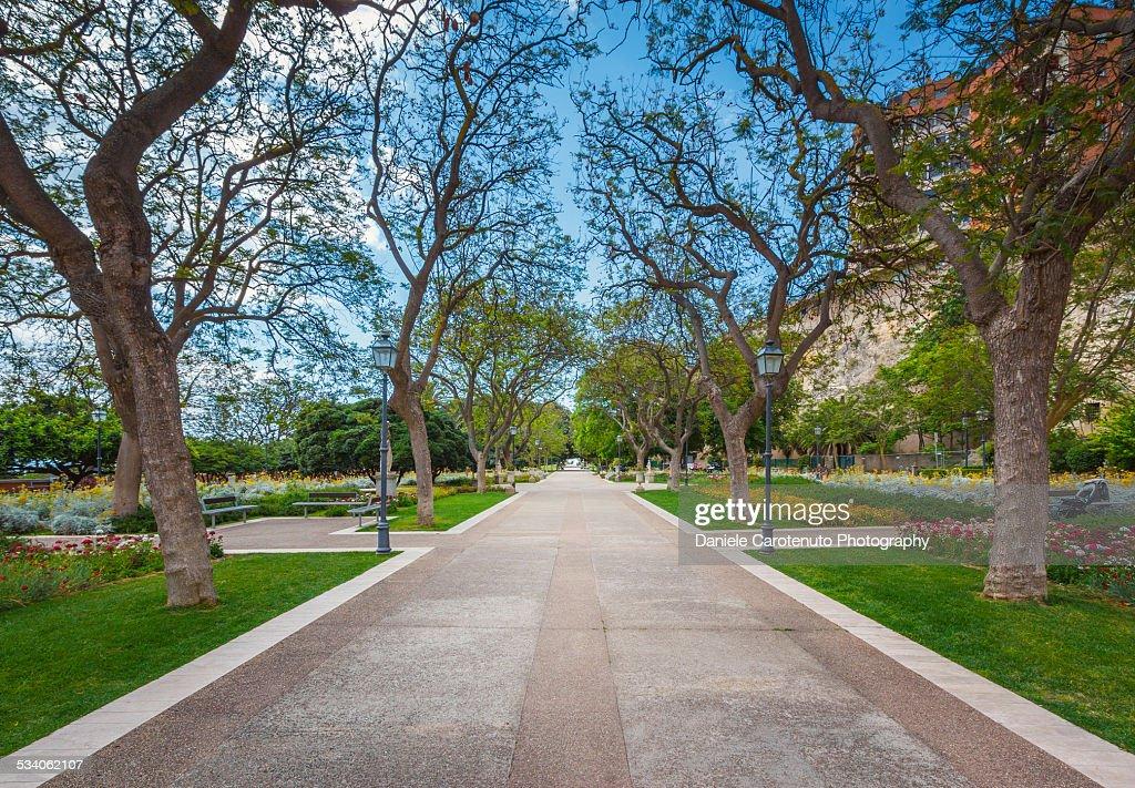 Public gardens : Stock Photo