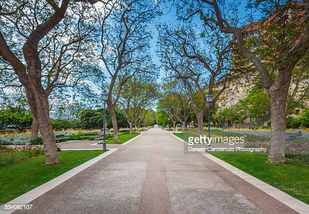 public gardens - daniele carotenuto stock pictures, royalty-free photos & images