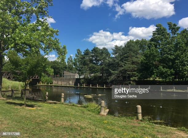 public park along the historical canal, cuyahoga valley national park, akron, ohio, usa - cuyahoga river stock photos and pictures