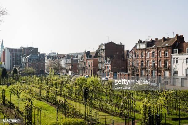 public park in lille - オードフランス地域圏 ストックフォトと画像