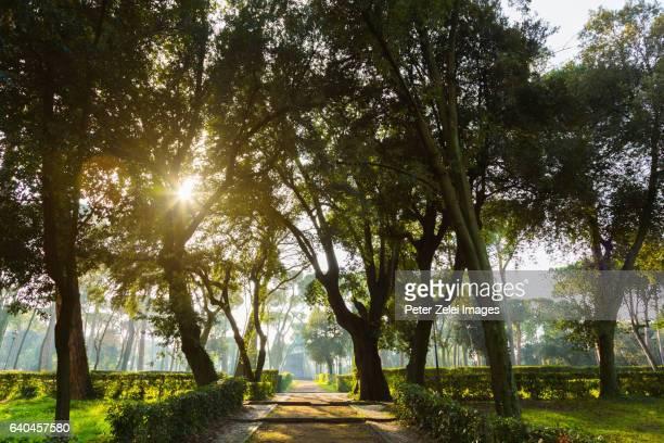 Public park (Villa Borghese gardens) in Rome, Italy