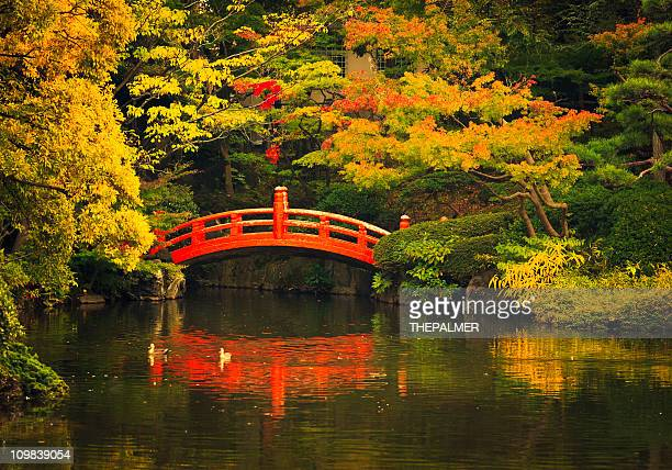 public park in tokyo - japanese garden stock photos and pictures