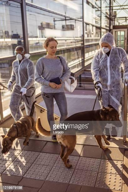 コロナウイルス発生時の公共交通機関ハブのセキュリティチェック - 訓練犬 ストックフォトと画像