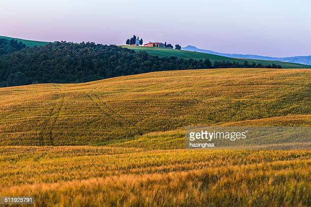 public view tuscany sunrise landscape - san quirico d'orcia stock pictures, royalty-free photos & images