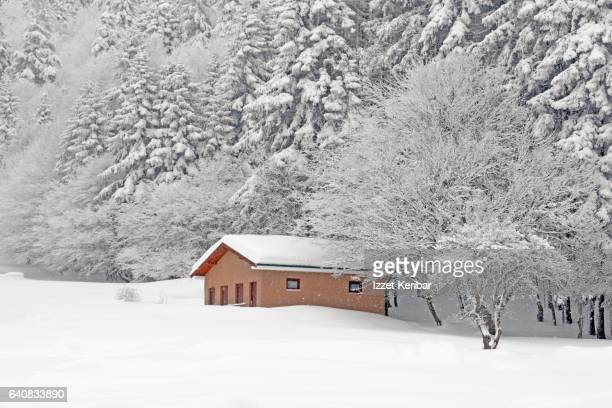 Public WC building after heavy snow at Abant Lake  Bolu Turkey