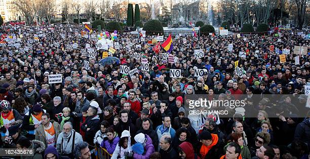 Public workers, small political parties and non-profit organisations stage a protest against government austerity on February 23, 2013 in Madrid....