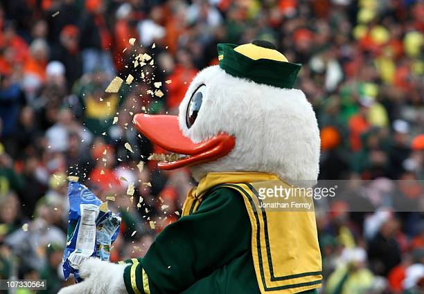 Puddles the mascot of the Oregon Ducks eats Tostitios corn chips after the 3720 victory over the Oregon State Beavers clinched a spot in the Tostitos...